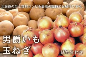 男爵いもと玉ねぎのセット -北海道産 旬の食材-