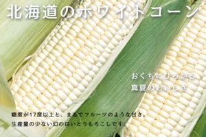 ホワイトコーン -北海道産とうもろこし-