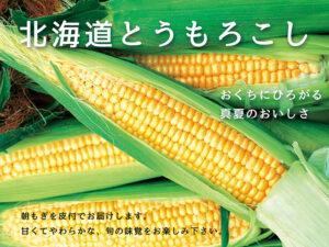 北海道トウモロコシ